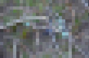 140418karasu069
